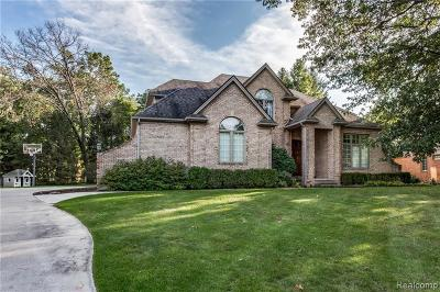 St. Clair Single Family Home For Sale: 2625 Whitney Place