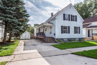Saint Clair  Single Family Home For Sale: 507 Trumbull St