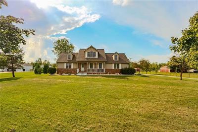 Belleville Single Family Home For Sale: 23950 Clark Rd