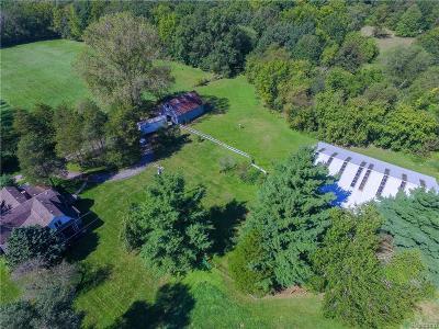 Belleville Single Family Home For Sale: 44640 Bemis Rd