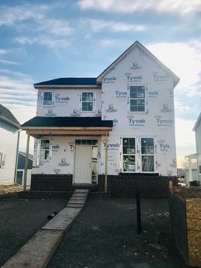 Royal Oak Single Family Home For Sale: 2441 Massoit St