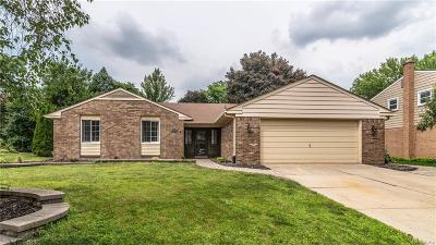 Northville Single Family Home For Sale: 41678 Rayburn Dr