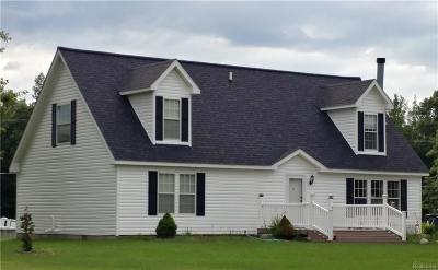 Lapeer Single Family Home For Sale: 2287 Doris Crt