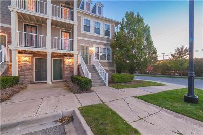 Lake Orion Condo/Townhouse For Sale: 108 Park Green Dr