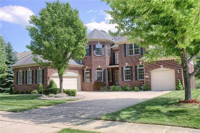Shelby Twp Single Family Home For Sale: 14114 Mandarin Dr