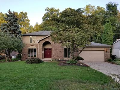 Rochester Single Family Home For Sale: 804 Medinah Dr