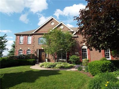 Northville Single Family Home For Sale: 15826 Spyglass Dr