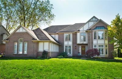 Bloomfield Hills Single Family Home For Sale: 1036 Home Ln