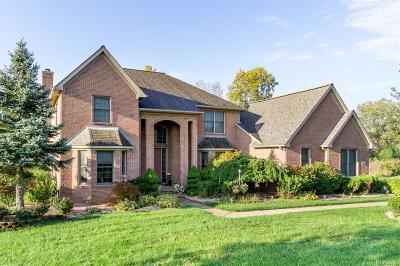 Canton Single Family Home For Sale: 49001 Castleside Dr
