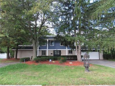 Southfield Single Family Home For Sale: 25861 Lathrup St