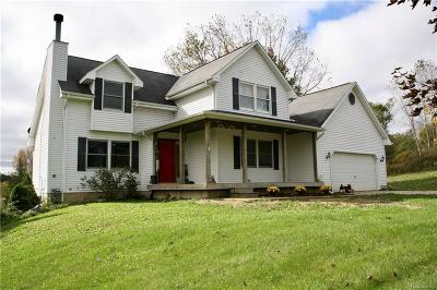Lapeer Single Family Home For Sale: 5892 Dryden Rd