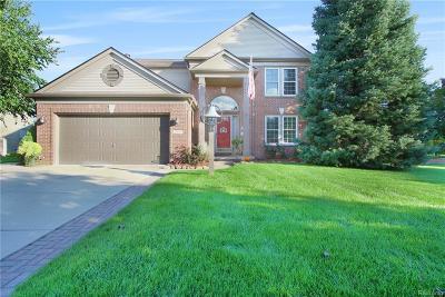 Macomb MI Single Family Home For Sale: $335,000