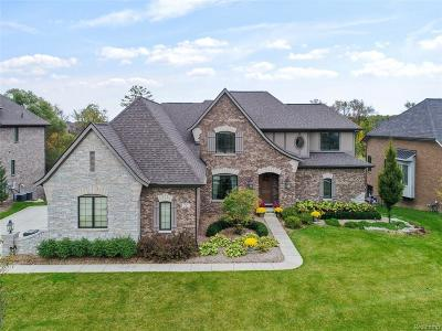 Rochester Hills Single Family Home For Sale: 1782 Traceky