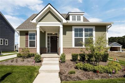 Royal Oak Single Family Home For Sale: 2560 Massoit St
