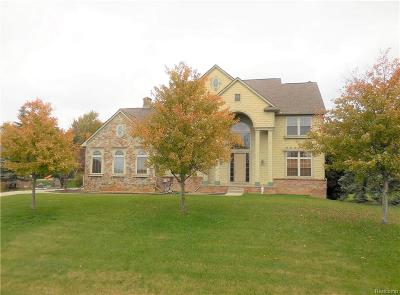 Lapeer Single Family Home For Sale: 1180 Invitational Dr