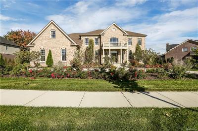 Northville Single Family Home For Sale: 50500 Tamarack Trl