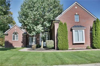 Shelby Twp Single Family Home For Sale: 7651 Birch Ln
