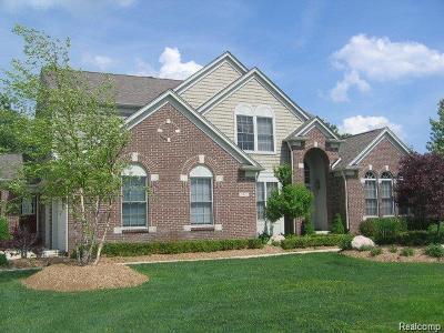 Rochester Single Family Home For Sale: 5835 Stonehaven Blvd