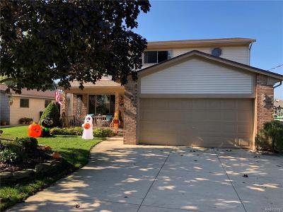 Macomb Single Family Home For Sale: 37995 Circle Dr
