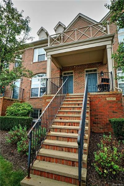 Northville Condo/Townhouse For Sale: 39647 Springwater Dr