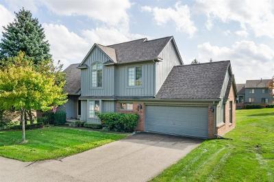 Oakland Condo/Townhouse For Sale: 37687 Avon Ln