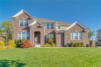 Farmington Hills Single Family Home For Sale: 22235 Lujon Dr