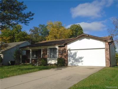Rochester Hills Single Family Home For Sale: 704 Dressler Ln