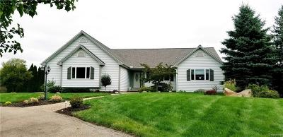 Lapeer Single Family Home For Sale: 347 Golf Rd