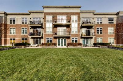 Detroit Condo/Townhouse For Sale: 66 Winder St
