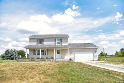 Lapeer Single Family Home For Sale: 8485 Shaw Rd