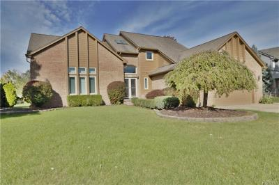 Macomb Single Family Home For Sale: 54095 Katherine Wood Dr