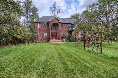 Belleville Single Family Home For Sale: 43238 Bemis Rd