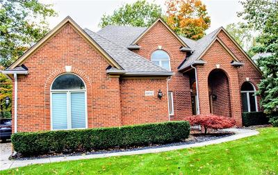 Shelby Twp Single Family Home For Sale: 48583 Red Oak Dr