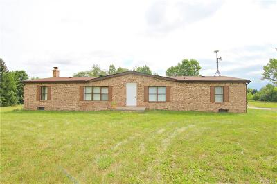 Macomb Single Family Home For Sale: 52652 Hayes Rd