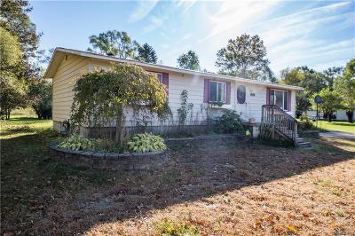 Belleville Single Family Home For Sale: 18323 Martinsville Rd