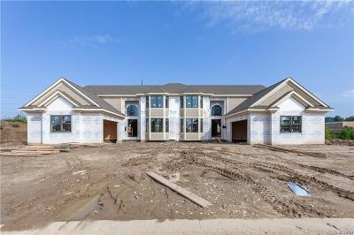 Northville Condo/Townhouse For Sale: 20201 Beacon Way