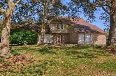 Farmington Hills Single Family Home For Sale: 33552 Walnut Ln