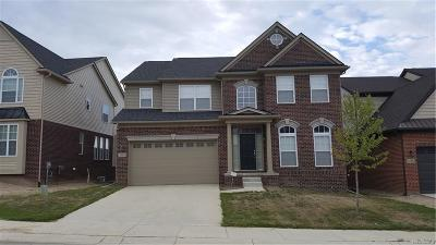 Lake Orion Single Family Home For Sale: 1120 Wales Dr
