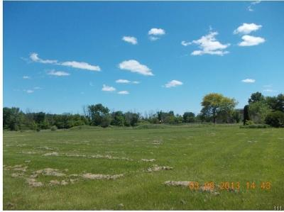 Residential Lots & Land For Sale: 60730 Place
