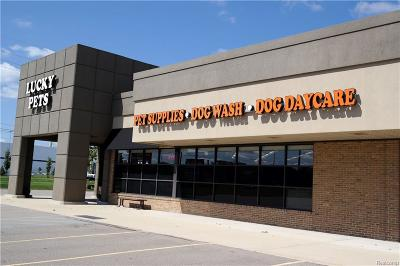 Commercial Lease For Lease: 37900 Van Dyke Ave