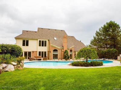Farmington Hills Single Family Home For Sale: 37855 Turnberry Crt