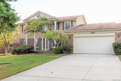 Troy Single Family Home For Sale: 6689 Granger Dr