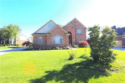 Livonia Single Family Home For Sale: 20533 Chestnut Cir