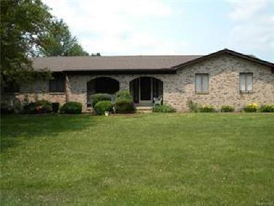 Clinton Township Single Family Home For Sale: 18818 Millar Rd