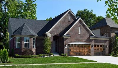 Macomb Single Family Home For Sale: 13196 Valencia Dr