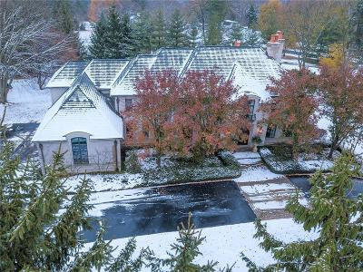 Bloomfield Hills Single Family Home For Sale: 372 Barden Rd