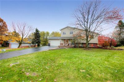Clarkston Single Family Home For Sale: 4588 Mountain View Trl