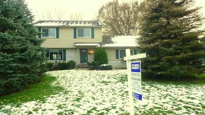 Rochester Single Family Home For Sale: 2055 Chalet Dr