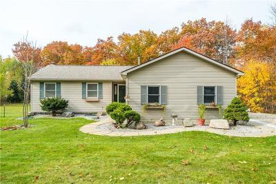 Lapeer Single Family Home For Sale: 5792 Honert Rd
