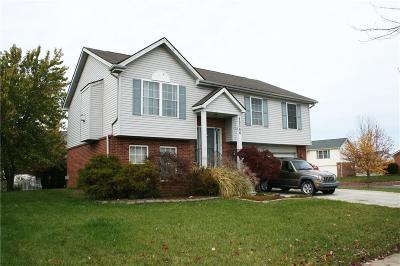 Trenton Single Family Home For Sale: 29366 Hunter St